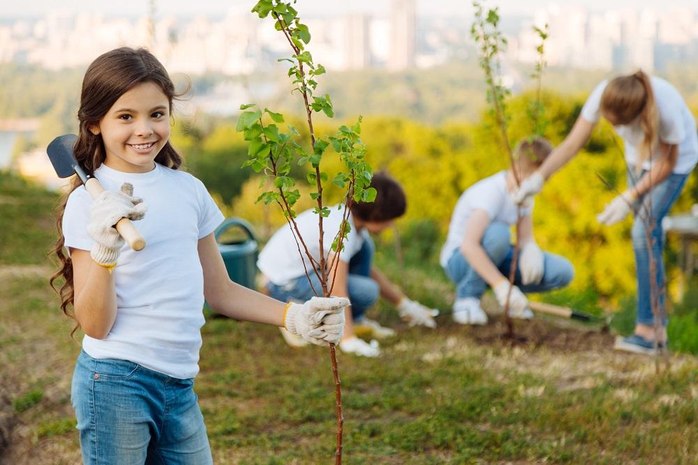 stromy, sázení, výsadba, město, děti